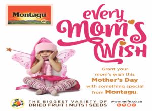 montagu web page